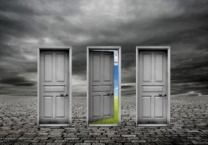 choice-doors300