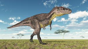 dinosaur300